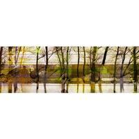 Parvez Taj 'Lake Trees' Painting Print on White Wood