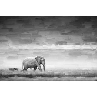 Parvez Taj 'Elephant' Canvas Art