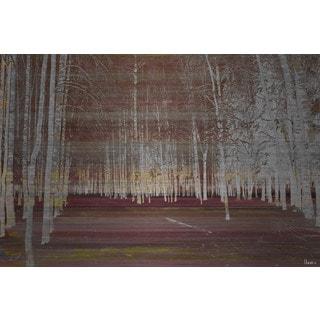 Parvez Taj 'Night Birch' Painting Print on Brushed Aluminum