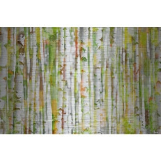 Parvez Taj 'Into the Trees' Painting Print on Brushed Aluminum