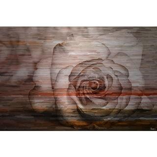 Parvez Taj 'Sleeping Rose' Painting Print on Brushed Aluminum