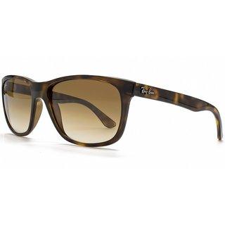 Ray-Ban RB4181 Tortoise Frame Graduated Crystal Brown Lens Sunglasses