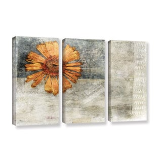 ArtWall Elena Ray ' Vintage Flower 3 Piece ' Gallery-Wrapped Canvas Set