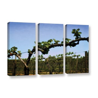 ArtWall Kevin Calkins ' Spring Vineyard 3 Piece ' Gallery-Wrapped Canvas Set