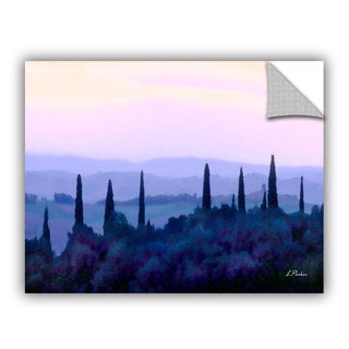 ArtAppealz Linda Parker 'Bethesda Fountain' Removable Wall Art
