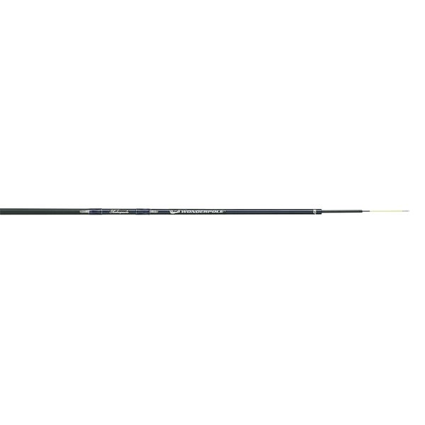 Shakespeare 10' Light Wonderpole Spinning Rod