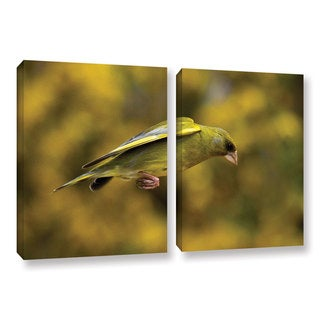 ArtWall Lindsey Janich 'Finch Leapings 1' 2 Piece Gallery-wrapped Canvas Set