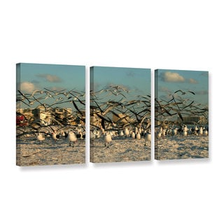 ArtWall Lindsey Janich 'Crazy Birds' 3 Piece Gallery-wrapped Canvas Set