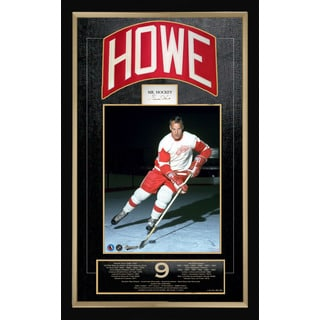 Gordie Howe Career Collectible - Museum Framed - Ltd Ed of 99