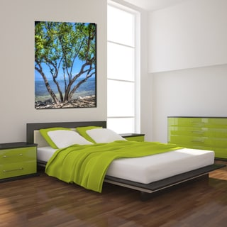 Ready2HangArt Bruce Bain 'Quiet Waters' Canvas Art
