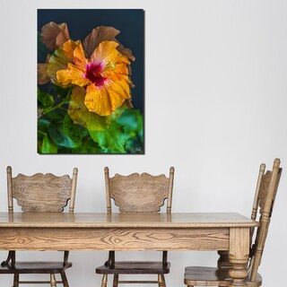 Ready2HangArt Bruce Bain 'Handsome Hibiscus' Canvas Art