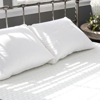 eLuxurySupply Extra Soft Density Cotton Down Pillow