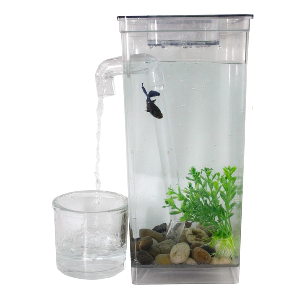 as seen on tv self cleaning fish tank free shipping on