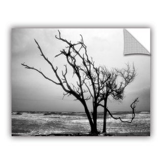 ArtAppealz Steve Ainsworth 'Hanging On' Removable Wall Art