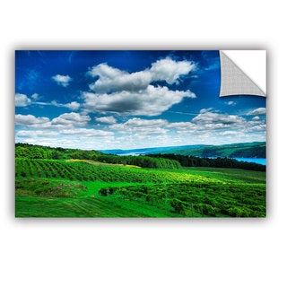 ArtAppealz Steve Ainsworth 'Vineyard And Lake' Removable Wall Art
