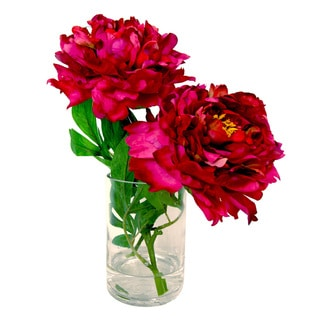 Lovely Magenta Peonies in Acrylic Water Filled Glass Vase