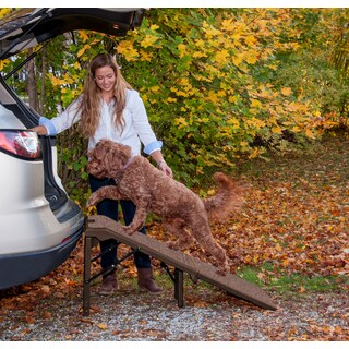 Pet Gear Free-standing Extra Wide Carpeted Pet Ramp