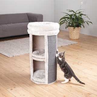 TRIXIE Mexia 2-story Cat Tree|https://ak1.ostkcdn.com/images/products/10376594/P17482429.jpg?impolicy=medium