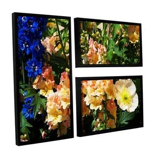 ArtWall Allan Friedlander 'Pink Poppy' 3 Piece Floater Framed Canvas Flag Set