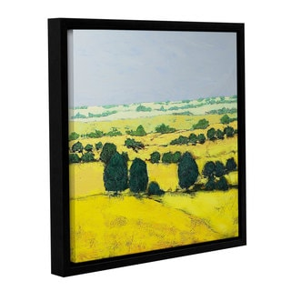 ArtWall Allan Friedlander 'Next Hill' Gallery-wrapped Floater-framed Canvas