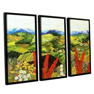 ArtWall Allan Friedlander 'One More Step' 3 Piece Floater Framed Canvas Set