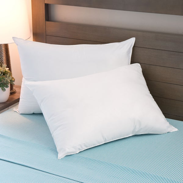 Sleep Protection MicronOne Basic Hypoallergenic Polyester Pillows (Set of 2) - White
