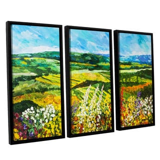 ArtWall Allan Friedlander 'Change Is In The Air' 3 Piece Floater Framed Canvas Set