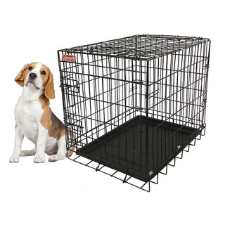 Coleman 24-inch Medium Heavy-gauge Foldable Wire Pet Kennel
