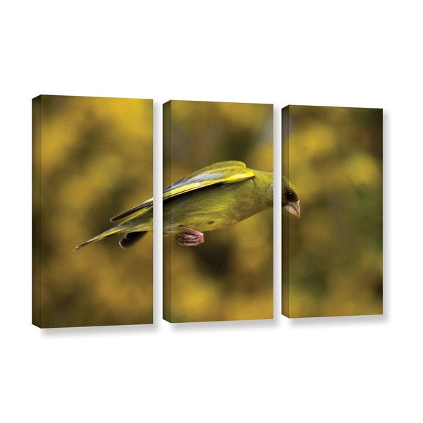 ArtWall Lindsey Janich 'Finch Leapings 1' 3 Piece Gallery-wrapped Canvas Set