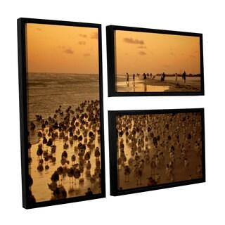 ArtWall Lindsey Janich 'Seagullsiii' 3 Piece Floater Framed Canvas Flag Set