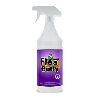 Flea bully 32 ounce natural flear killer flea for Ant infestation in kitchen cabinets