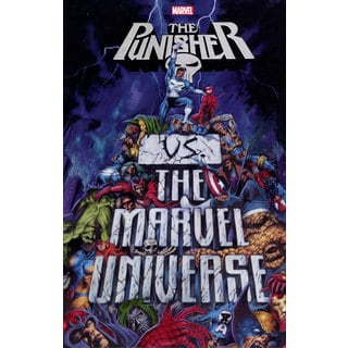 Punisher Vs. the Marvel Universe (Paperback)