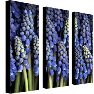 AIANA 'Grape Hyacinth' Canvas Art set of 4