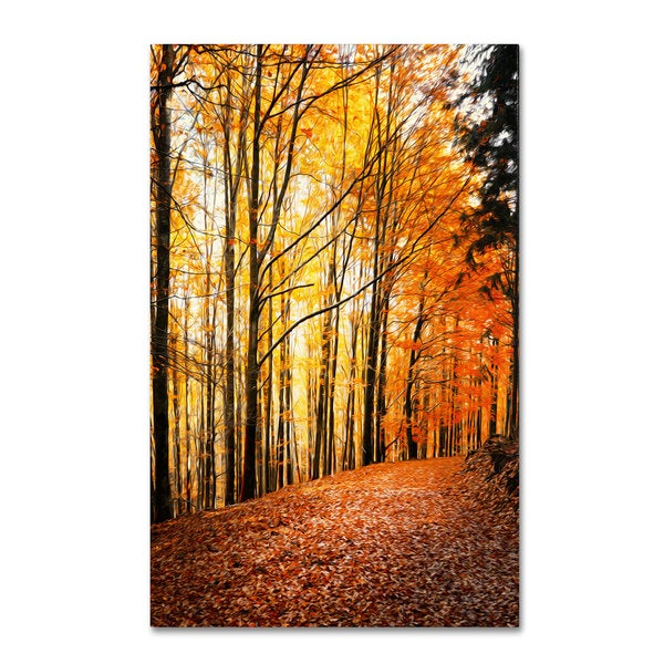 Philippe Sainte-Laudy 'Yellow Moment' Canvas Art - Multi