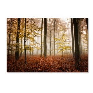 Philippe Sainte-Laudy 'Calmness' Canvas Art
