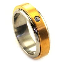 James Cavolini IP Gold Stainless Steel Two-Tone Spinner Ring - Silver
