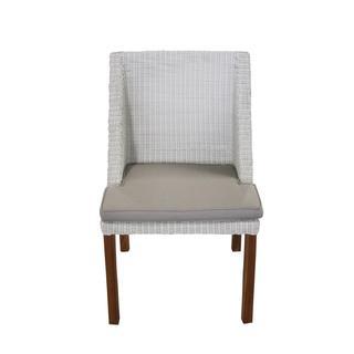 Decorative White Modern Indoor/ Outdoor Chair