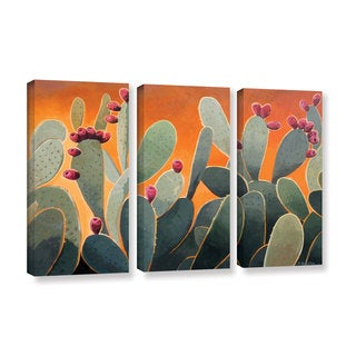 ArtWall Rick Kersten 'Cactus Orange' 3 Piece Gallery-wrapped Canvas Set