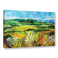 ArtWall Allan Friedlander 'Change Is In The Air' Gallery-wrapped Canvas - Multi
