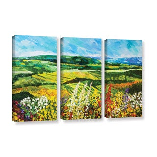 ArtWall Allan Friedlander 'Change Is In The Air' 3 Piece Gallery-wrapped Canvas Set