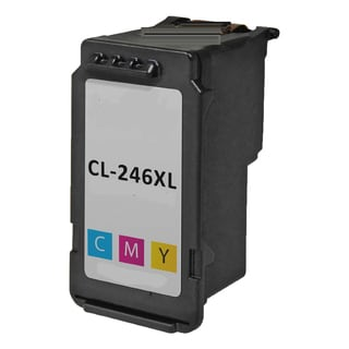 CL 246XL Compatible Inkjet Cartridge For PIXMA MG2420 MG2922 MG2924 MG2520 MG2920 IP2820 (Pack of 1)