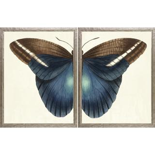 Butterfly Duo Framed Art Print Set - Silver
