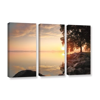 ArtWall Steve Ainsworth 'Renewal' 3 Piece Gallery-wrapped Canvas Set