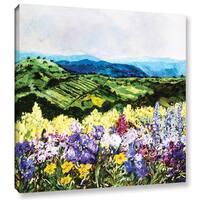 ArtWall Allan Friedlander 'Pollinator'S Ravine' Gallery-wrapped Canvas
