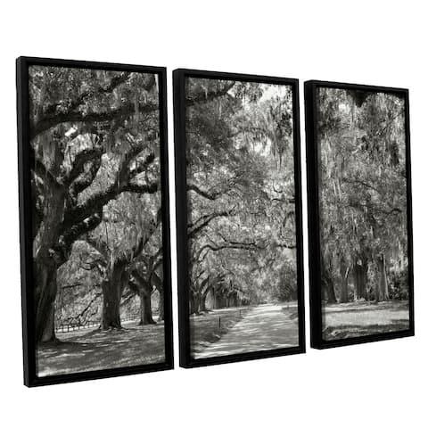 ArtWall Steve Ainsworth 'Live Oak Avenue' 3 Piece Floater Framed Canvas Set