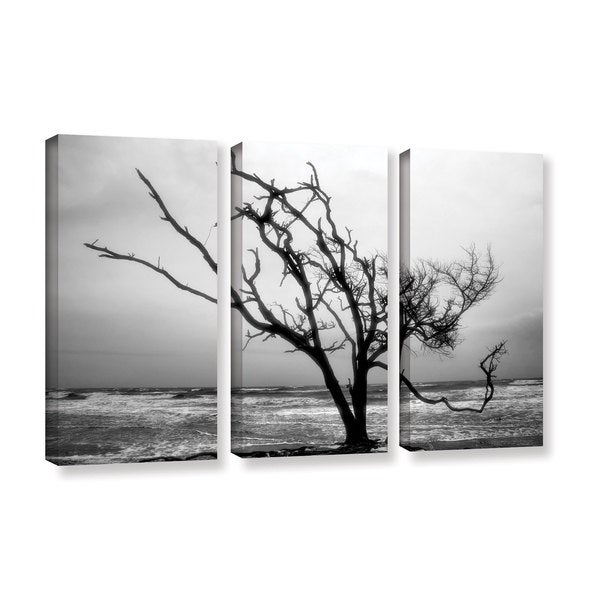 ArtWall Steve Ainsworth 'Hanging On' 3 Piece Gallery-wrapped Canvas Set - Multi thumbnail