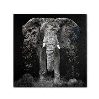 Erik Brede 'The Disappearance of the Elephant' Canvas Art