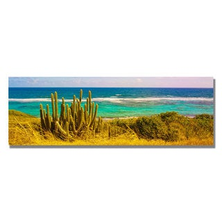 Preston 'St. Croix Beach' Canvas Art