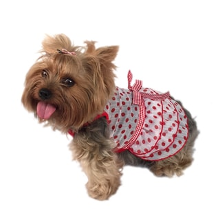 ANIMA Polka-dot Chiffon Layered Pet Dress