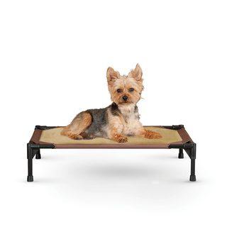 K&H Pet Products Comfy Pet Cot